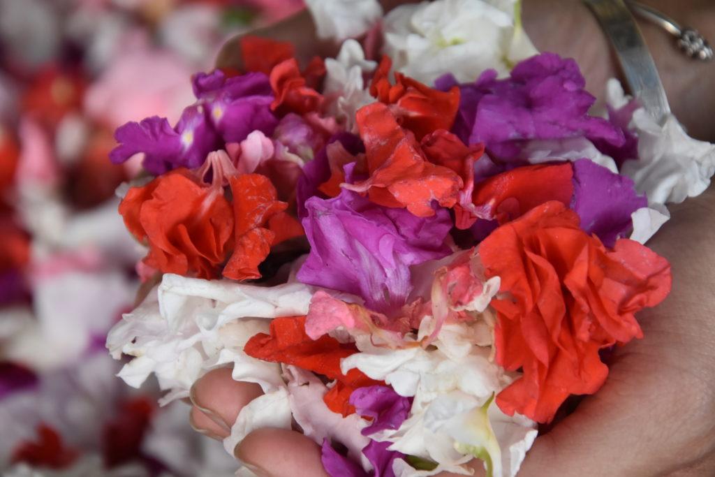Marché des fleurs